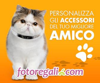 Accessori personalizzati per animali